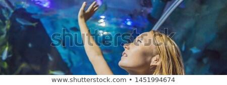 Młoda kobieta patrząc ryb tunelu akwarium banner Zdjęcia stock © galitskaya