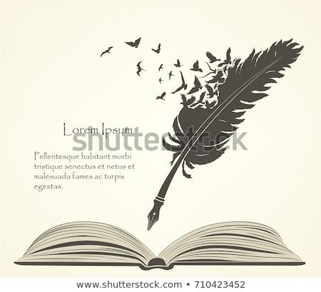 выпускник птица пергаменте иллюстрация бумаги школы Сток-фото © adrenalina