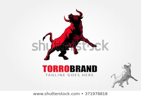 Rajz torreádor bika izolált illusztráció fut Stock fotó © tiKkraf69