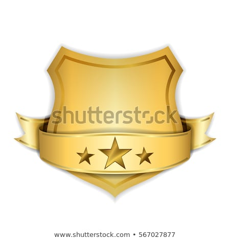 трофей звездой икона графического дизайна шаблон вектора Сток-фото © haris99