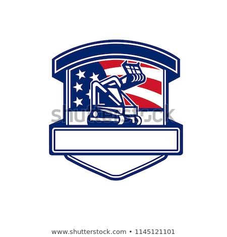 Amerikan ormancılık ABD bayrak Retro retro tarzı Stok fotoğraf © patrimonio