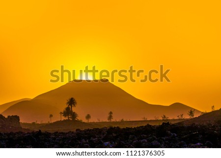 romantic sunset with standalone trees in volcanic area  Stock photo © meinzahn