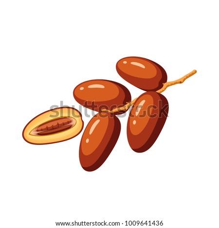 вектора · бесшовный · фрукты · шаблон · рисованной - Сток-фото © frescomovie