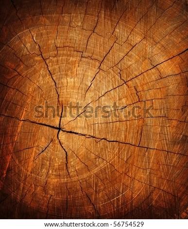 saw on texture of tree stump stock photo © inxti