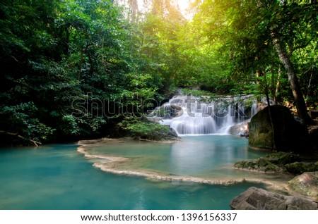 selva · lago · floresta · reflexões · borda · árvores - foto stock © nejron