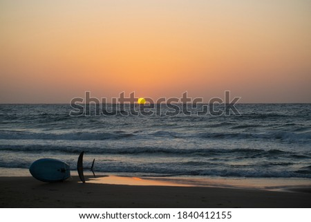 доска для серфинга привязь пляж Sunshine спорт Сток-фото © wavebreak_media