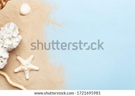 Starfish · морем · песок · пляж · лет - Сток-фото © wavebreak_media