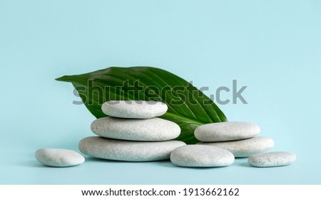Foto stock: Stacked Stones On Base Of Green Leafs