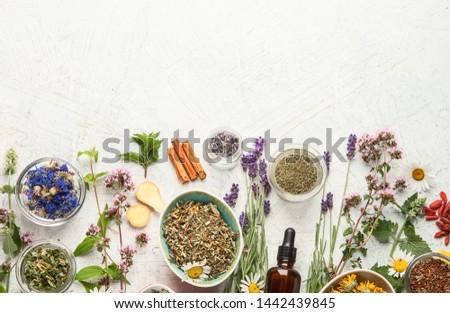 Alternatif tıp kurutulmuş otlar doğa güzellik tıp Stok fotoğraf © JanPietruszka