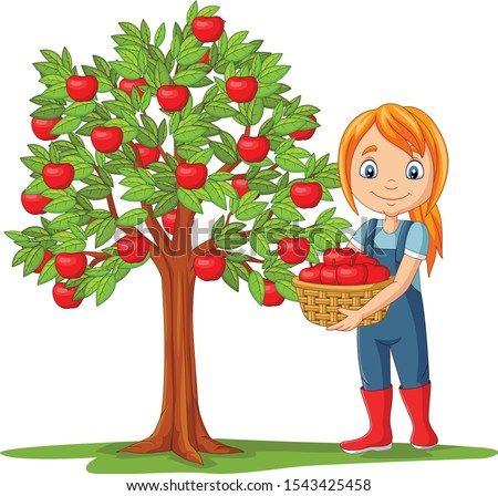 woman holding basket of apples Stock photo © IS2
