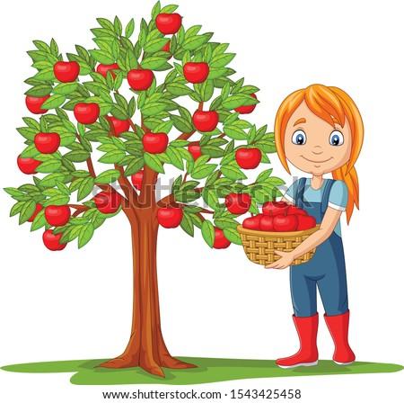 femme · panier · pommes · nature - photo stock © is2
