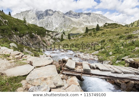 Bridge over mountain creek in Austrian/Italian Alps. Stock photo © lichtmeister