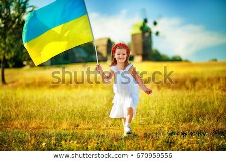 Europese unie Oekraïne vlaggen rij vlag Stockfoto © vapi