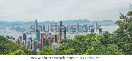 Grand panorama Hong-Kong Skyline vue pic Photo stock © galitskaya