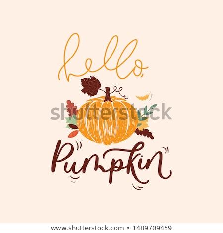 осень карт вектора стиль Осенний сезон Сток-фото © frimufilms