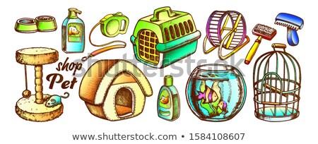 Haustier Laden Ausrüstung Sortiment monochrome Vektor Stock foto © pikepicture