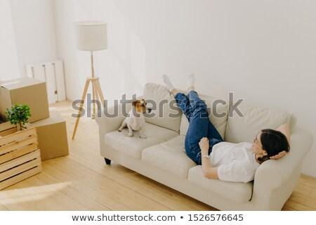 Jelzálog nyugodt barna hajú nő kényelmes kanapé Stock fotó © vkstudio