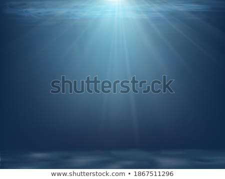 Vector blue ocean landscape design with transparent background. Summer illustration with sea scene a Stock photo © articular