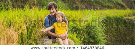BANNER, LONG FORMAT Dad and son travelers on Beautiful Rice Terraces against the background of famou Stock photo © galitskaya