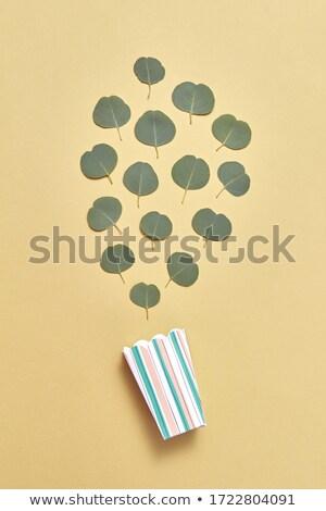 Papel comida caixa sempre-viva folhas padrão Foto stock © artjazz