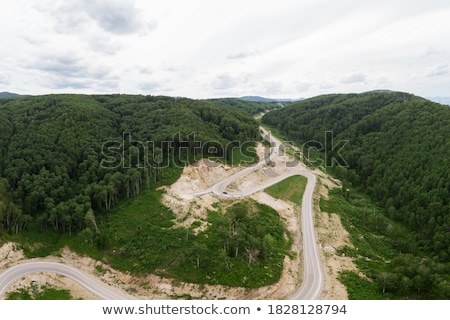 Aerial top vew of winding road Stock photo © olira