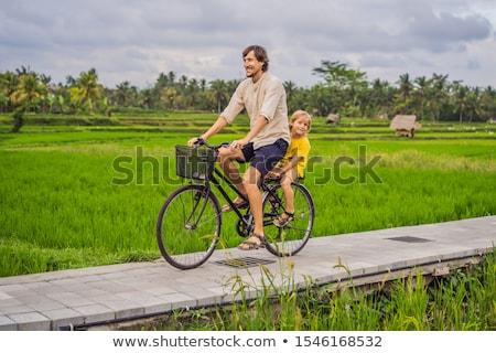 Filho pai bicicleta arrozal bali viajar crianças Foto stock © galitskaya
