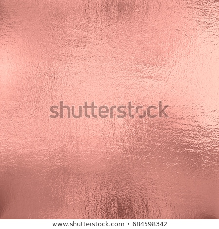 Stock photo: Rose
