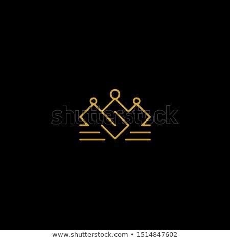 letter S luxury royal golden logo concept design Stock photo © SArts