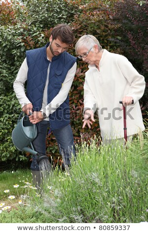 Stockfoto: A Gardener Watering Flowers In A Garden And An Elderly Lady Making Comments As She Watches Him