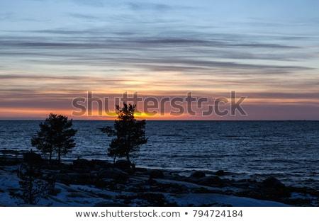 バルト海 · 冬 · 風の強い · 日 · 水 · 雲 - ストックフォト © lianem