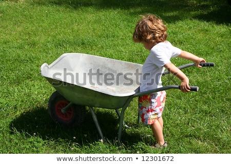 Fiú toló talicska boldog tájkép haj Stock fotó © photography33