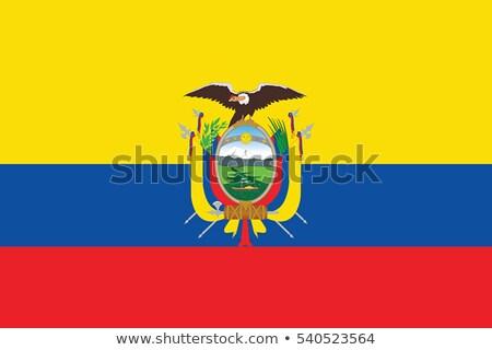 Zászló ikon izolált fehér internet háttér Stock fotó © zeffss