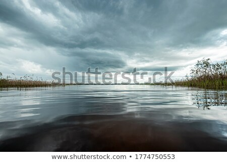 Lake at dusk. stock photo © Pietus