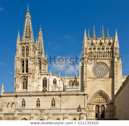 gothic rosette of principal facade of burgos cathedral spain stock photo © photooiasson