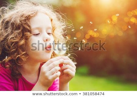 Sweet невиновность красивой девочку улыбаясь рук Сток-фото © lisafx