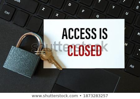 cadeado · acessar · projeto · segurança · imprimir - foto stock © a2bb5s