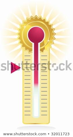 futuristic goal meter stock photo © cteconsulting