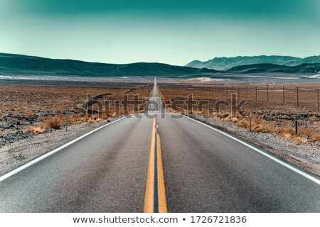 Desert highway Stock photo © alexeys