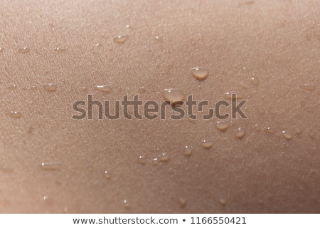 Close up shot of a water droplet Stock photo © jrstock
