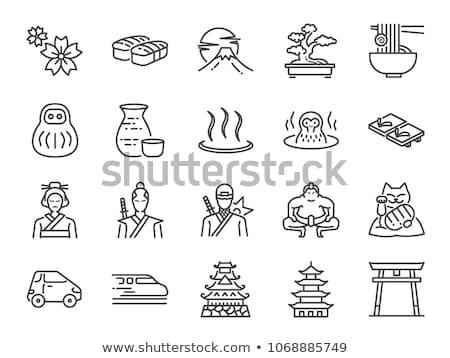 Japan iconen vector ingesteld gestileerde Stockfoto © vectorpro