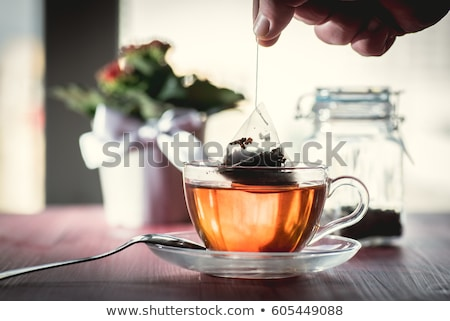 Herbal tea bag in glass cup Stock photo © elenaphoto
