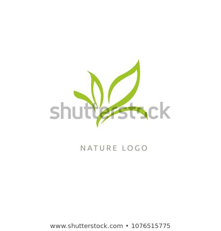 Eco friendly business logo with green leaves Stock photo © shawlinmohd