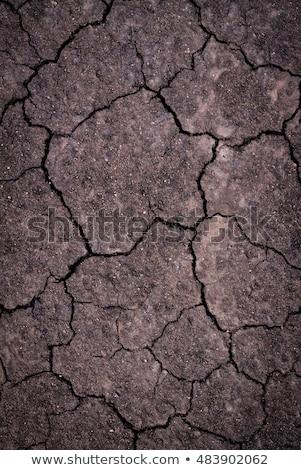 栽培 土壌 表面 自然 背景 パターン ストックフォト © cherezoff