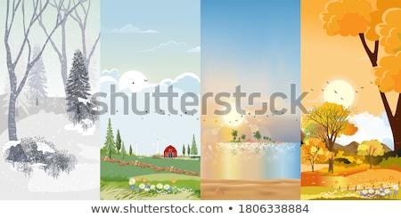 mooie · najaar · kleuren · park · Schotland · alle - stockfoto © igabriela