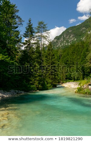 Dere Slovenya Avrupa su ahşap doğa Stok fotoğraf © Fesus