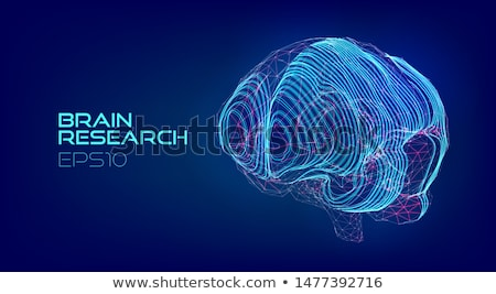 Stock fotó: Agy · absztrakt · tudomány · eps10 · átláthatóság · használt