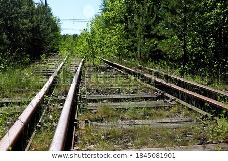 abandoned train on railway stock photo © pixxart