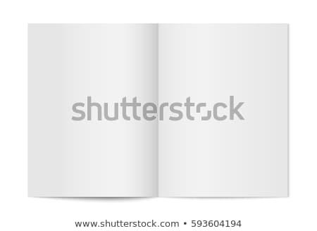 вектора журнала белый шаблон дизайна прибыль на акцию Сток-фото © sabelskaya