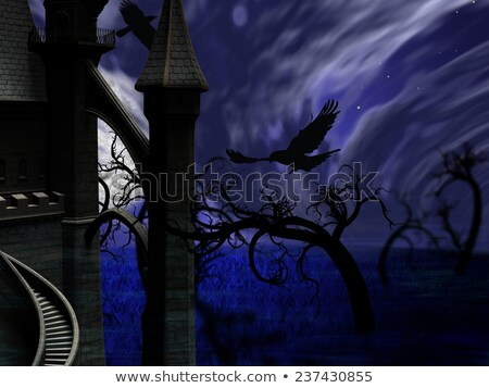 Illustration of night forest with full moon, castle and ravens Stock photo © ankarb
