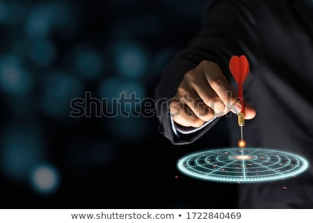Investment - Arrows Hit in Red Target. Stock photo © tashatuvango
